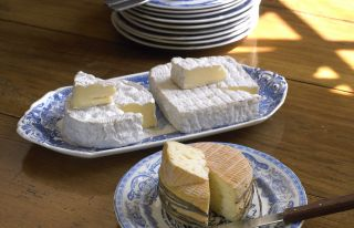 Taste the cheese in Normandy