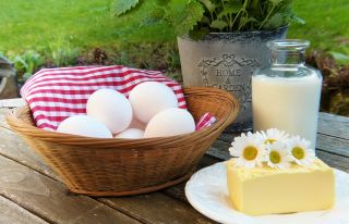 Buy dairy products of Normandy in the Bocage