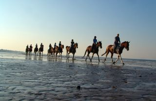 Horse riding on the beach in Calvados